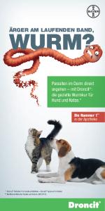 PDF: Droncit für Hunde und Katzen