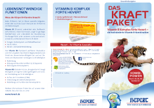 PDF: Gesundheitsratgeber Kraftpaket