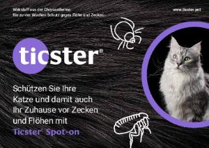 PDF: Schutz gegen Flöhe und Zecken für Ihre Katze