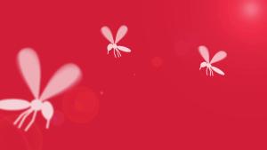 Video: Zuverlässiger Schutz gegen Mücken