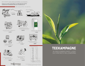 PDF: Teekampagne Faltblatt zur Preiskalkulation